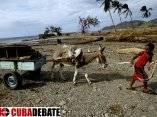 Huracán Sandy - Mar Verde. Foto: Ismael Francisco/Cubadebate.