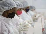 Operarias en una sala de envase manual. La Planta de Envase tiene una capacidad de aproximadamente 100 000 unidades físicas (viales) diarias, según la presentación. Foto: Irene Pérez/ Cubadebate.