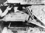 Che, Práctica de tiro, 1956