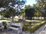 descuidos-silentes-en-el-cementerio-de-colon-26