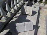 descuidos-silentes-en-el-cementerio-de-colon-33