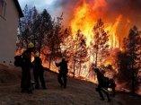 ecologia-fuego-california