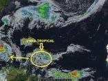 onda-tropical