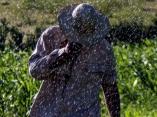 LLuvia en el campo.Foto: Ismael Francisco/ Cubadebate
