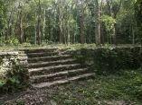 terrazas-ruinas-cafetalunion