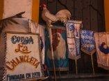 remedios9-conga-lachancleta