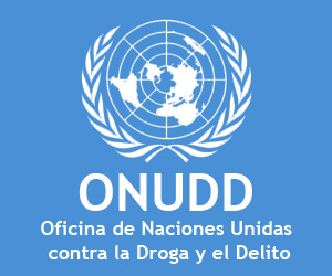 Onu califica de efectiva pol tica cubana antidroga for Origen de las oficinas