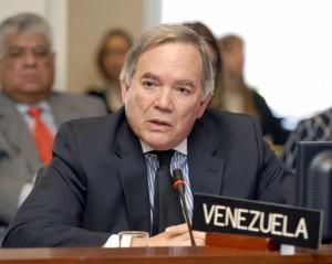 El ratón de Micheletti está jugando con la OEA, afirma Roy Chaderton