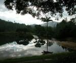 Las Terrazas, Pinar del Río