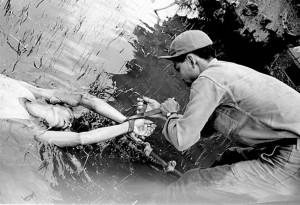 Un soldado norteamericano amarra a un vietnamita para arrastrarlo con un carro por el lodo, en 1964. (Foto: Newsweek)