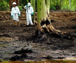 Desechos toxicos de Chevron