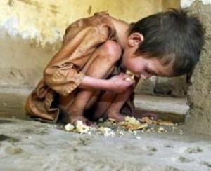 FAO: Precios de alimentos aumentarán hasta un 40% en los próximos 10 años