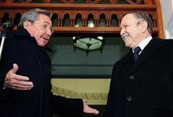 Imagen de las conversaciones oficiales entre Raúl y Bouteflica en Argelia, el 9 de febrero de 2009.
