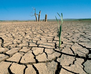 El Senado de EEUU no reconoce la existencia del cambio climático
