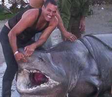 tiburon-villaclara