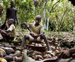 Los gemelos Hassan y Hussein, de ocho años; abren las vainas de cacao en una aldea de Costa de Marfil. Foto CNN
