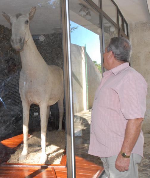 El caballo de Camilo en su nuevo stand, sigue siendo una de las atracciones principales para el visitante al Museo NAcional Camilo Cienfuegos, en Yaguajay, Sancti Spíritus, Cuba, el 21 de octubre de 2009. AIN/ FOTO Oscar ALFONSO SOSA