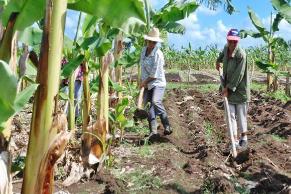 15 de Octubre, Día internacional de la Mujer Rural