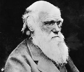 Charles Darwin portada