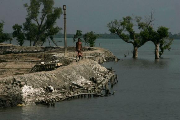 En esta foto del jueves 3 de diciembre del 2009, un aldeano camina por la costa mientras se ven árboles semisumergidos en el delta de Sundarban en Lahiripur, a 140 kilómetros (87 millas) al sur de Calcuta, India. Los científicos han advertido que los alarmantes aumentos de temperatura en la Bahía de Bengala debido al cambio climático podría inundar islas, destruir bosques y afectar Sunderbans, donde vive un millón de personas (AP Foto/Bikas Das)