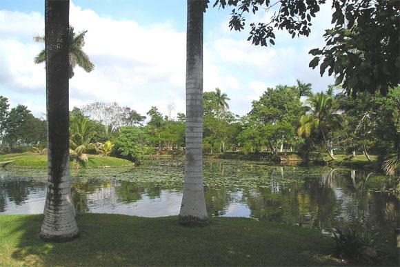 Parque Nacional Ciénaga de Zapata en Cuba