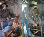 Eliseo Herrera Mangano, el mejor apicultor de Cuba