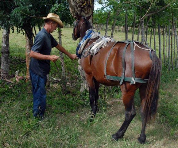 Campesino preparándose para recorrer las tierras