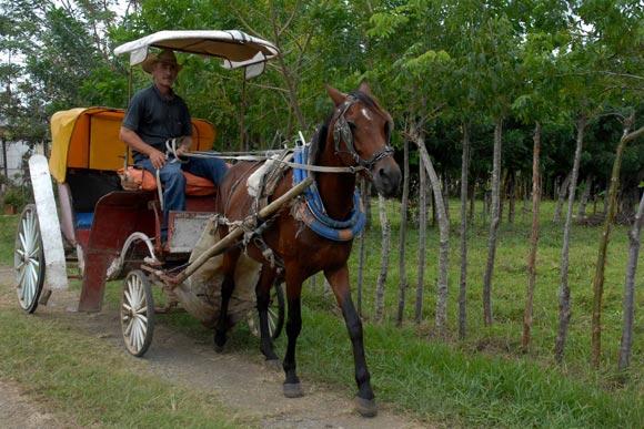 Medio de transporte comúnmente utilizado por los habitantes de las zonas rurales