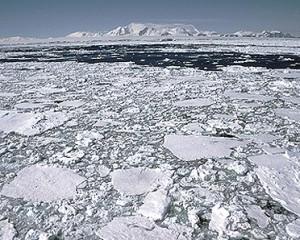 Una imagen de la Antártida. Foto: British Antarctic Survey