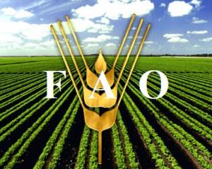 Carl Lewis, Chucho Valdés o Jeremy Irons se unen a la FAO contra el hambre