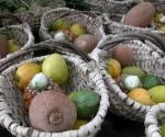 frutas-del-caney