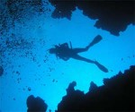 Imagen subacuática