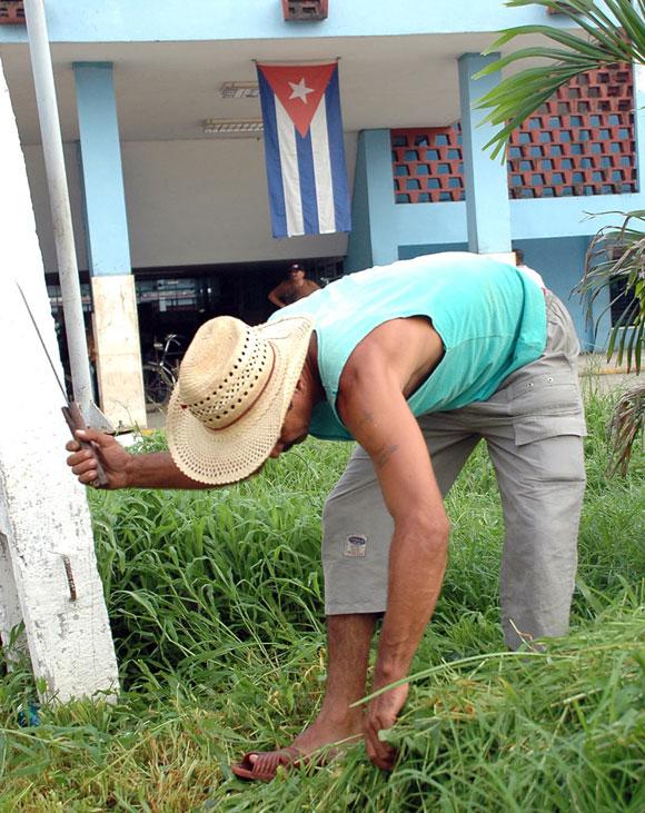 Jardinero, cuida la belleza de un centro escolar