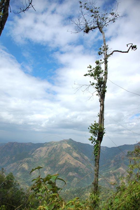 Una vista del acojedor paisaje de la Sierra Maestra. Foto: Kaloian