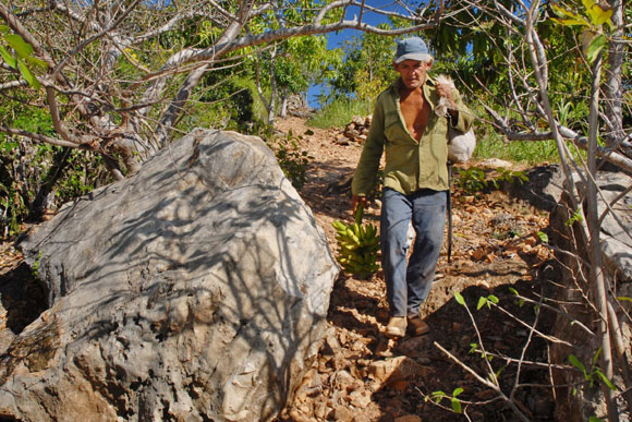 Hombre bueno en tierra mala, campesino cubano de Holguín