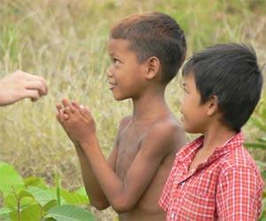 FAO contra el hambre