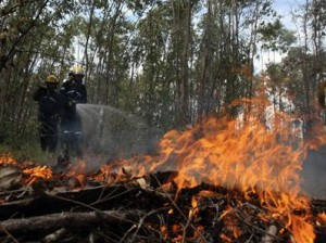 En alerta roja varias localidades de Colombia debido a incendios forestales
