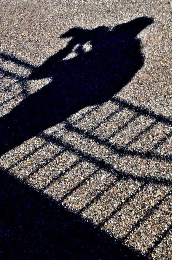 Reflejos. Foto: Liborio Noval, Andorra Noviembre de 2008