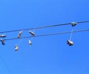 zapatos-cables-electricos4