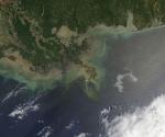 Derrame de Petróleo: Marea Negra en Louisiana (Foto: NASA)