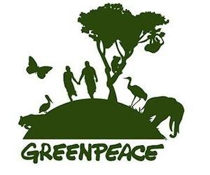 Greenpeace convoca a apagón en Acapulco para crear consciencia sobre medio ambiente