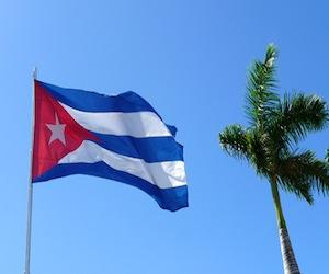 bandera-cubana-y-palma-real