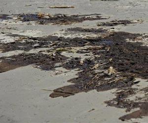Muestra de la marea negra en el Golfo de México