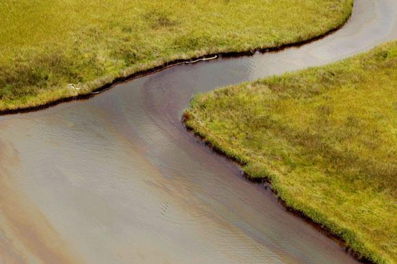 Derrame de petróleo en el Golfo de México, 2 meses después