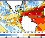 La temperatura en la superficie del mar alcanza valores records en todo el atlántico tropical de más de 1.5 grados por encima de lo normal. Indica gran contenido de calor oceánico. (Fuente: National Climate Center, NOAA)