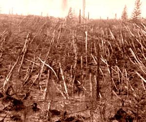 La ola de calor en Rusia destruyó cien mil kilómetros cuadrados de cultivos
