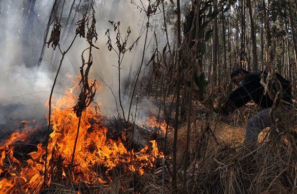 bolivia-incendios