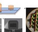 El dispositivo funciona por los efectos de la interferencia cuántica.