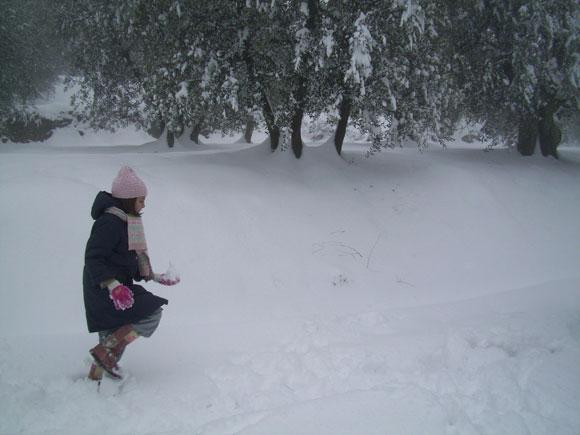 ITALIA.- Amanecer del sábado 18 en Arezzo, región norte de Italia, después de una fuerte nevada caída desde la tarde del viernes. No son usuales nevadas como esta en ese país. Foto/ María E. Brito