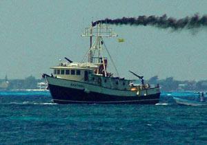 """Cinco hombres llegaron, y salieron seis: de acuerdo a pescadores locales y testigos el """"Santrina"""" fue a Miami con un pasajero extra a bordo. Foto: D.R. 2005 Mario Alonzo, Por Esto!"""